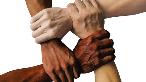 Four arms of different races interlocked