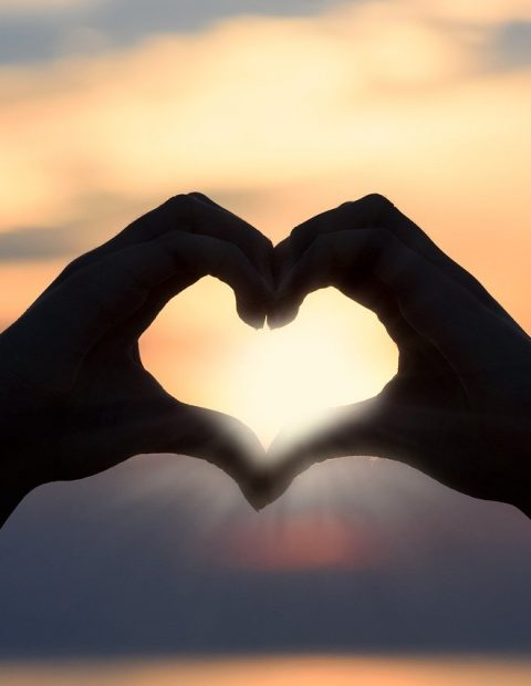 heart shape made by hands with sunlight coming through