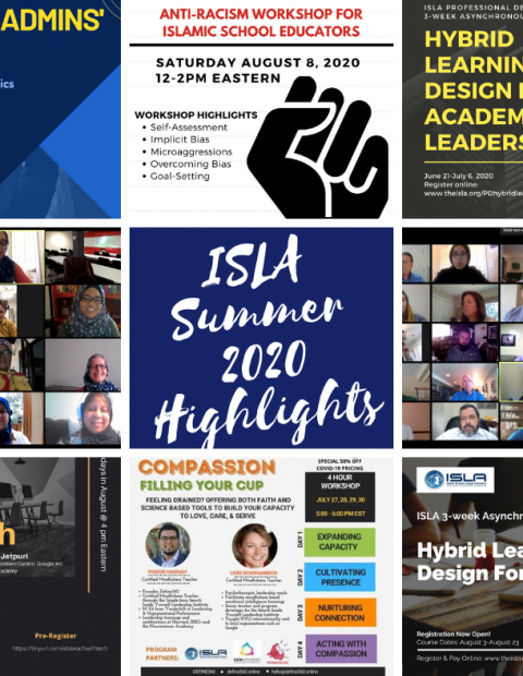 collage of fliers from summer webinars
